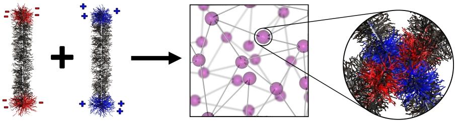 Figure 4 copy
